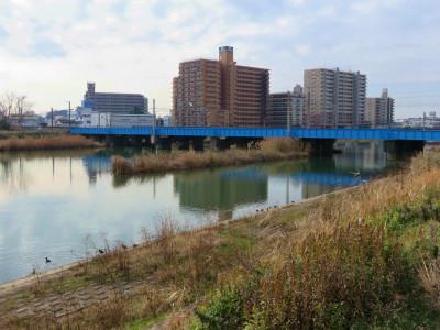 常磐線 桜川橋梁